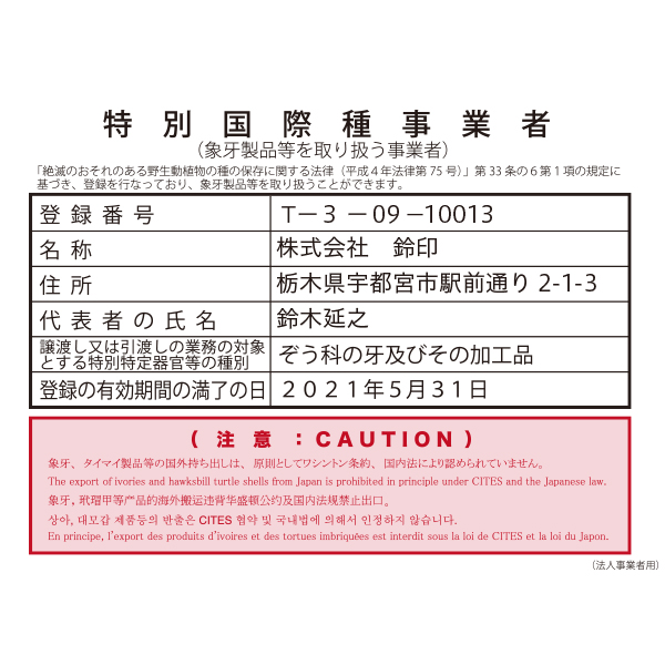 nin-zg1-001